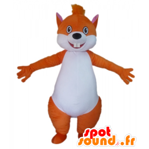 Wholesale mascot orange and white squirrel