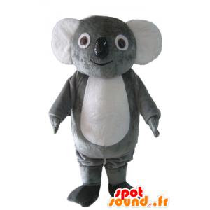 Mascot grijze en witte koala, mollig, lief en grappig