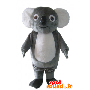 Mascot koala gray and white, plump, sweet and funny