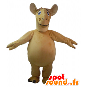 Mascot velbloud, béžové velbloud, obří