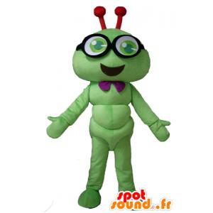 Maskottchen grüne Raupe, lächelnd Insekt, mit Brille - MASFR23117 - Maskottchen Insekt