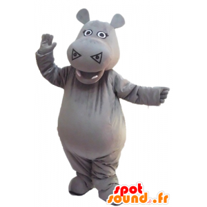 Mascot gray hippo, cute and impressive