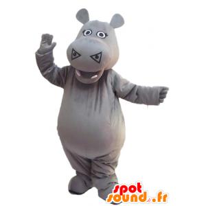 Mascotte d'hippopotame gris, mignon et impressionnant