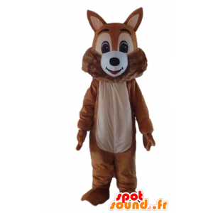 Mascot brown and white squirrel, sweet and hairy - MASFR23186 - Mascots squirrel