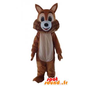 Maskotti ruskea ja valkoinen orava, pehmeä ja karvainen