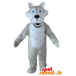 Maskotti harmaa ja valkoinen susi, siniset silmät ja katsoa keskiarvo - MASFR23220 - Wolf Maskotteja
