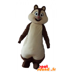 Mascot καφέ και λευκό σκίουρος, Tic ή Tac