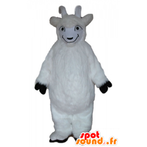 Mascot goat, white goat, hairy all - MASFR23245 - Goats and goat mascots