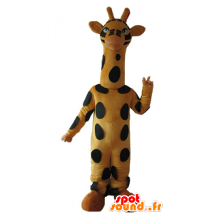 Mascot av svart og gul giraff, høy, vakker