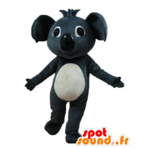 Mascot bel grigio e koala bianco, gigante - MASFR23253 - Mascotte Koala