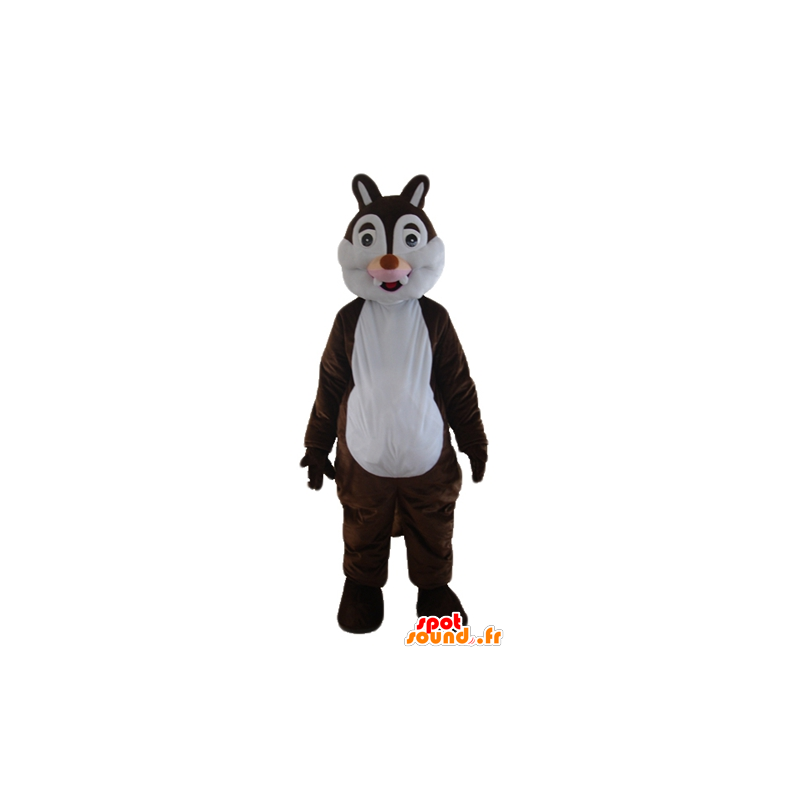 Mascot brown and white squirrel, Tic Tac or - MASFR23285 - Mascots squirrel