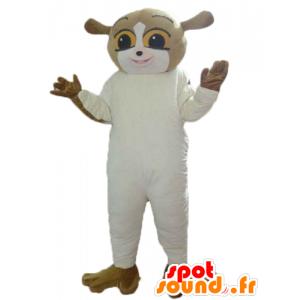 Ekorn maskot, brun og hvit lemur - MASFR23574 - Maskoter Squirrel