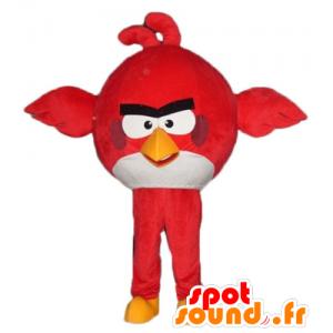 Maskot stor röd och vit fågel från spelet Angry Birds -