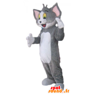 Tom maskotti, kuuluisa harmaa ja valkoinen kissa Looney Tunes - MASFR23802 - Mascottes Tom and Jerry
