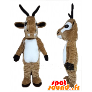 Vuohi Mascot, vuohen, ruskea ja valkoinen poro