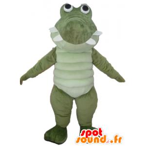 Large green crocodile mascot and white, very successful and fun - MASFR24107 - Mascot of crocodiles