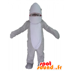 Mascot gray and white shark, realistic and impressive - MASFR24117 - Mascots shark