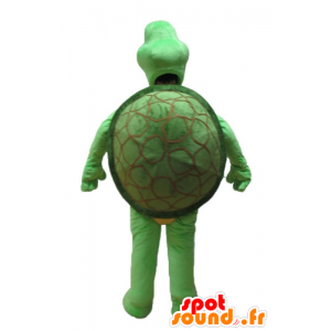 Green turtle mascot and beige - MASFR24151 - Mascots turtle