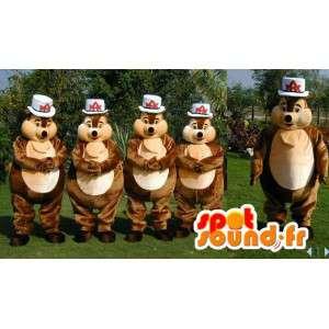 Brązowe maskotek wiewiórki. 4 Pakiet kostium wiewiórki