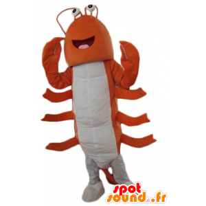 Giant lobster mascot, orange and white crayfish