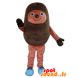 Braun Igel-Maskottchen, bicolor, heiter - MASFR24200 - Maskottchen-Igel