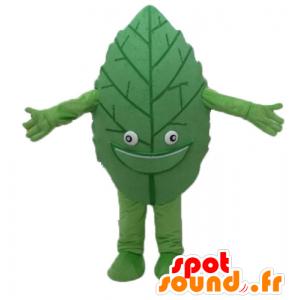 Mascotte de feuille verte, géante et souriante