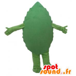 Grünes Blatt-Maskottchen, Riesen und lächelnd - MASFR24206 - Maskottchen der Pflanzen