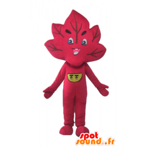 La mascota de hoja roja, gigante y sonriente
