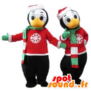 冬の衣装で2つのペンギンのマスコット-MASFR24492-ペンギンのマスコット