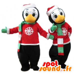 2 mascots penguins in winter outfit - MASFR24492 - Penguin mascots