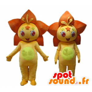 2 mascotte di aranci e fiori gialli, gigli