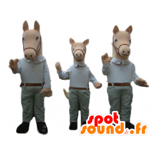 3 Maskottchen Pferde, in einem Hemd und Hose gekleidet - MASFR24510 - Maskottchen-Pferd