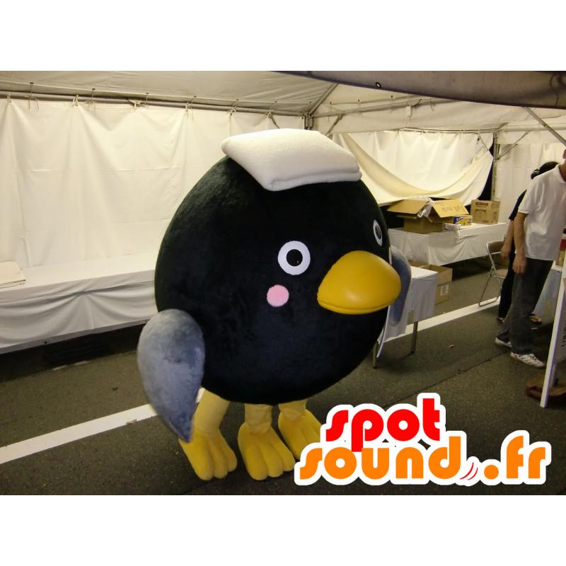 Přejít na Kos černý - Kos černý je středně velký pták s délkou těla 23 - 29 cm.