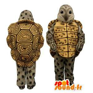 Mascot χελώνα γκρι, κίτρινο και καφέ