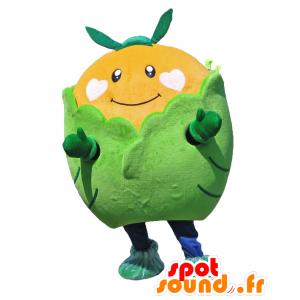 Mascotte Sakabe, circondato da un gigante mandarino lattuga - MASFR27918 - Yuru-Chara mascotte giapponese