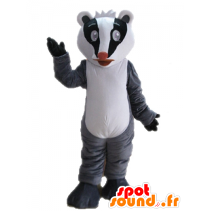 La mascota mofeta tricolor. mapache de la mascota - MASFR028710 - Mascotas de cachorros