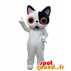 λευκό και μαύρο μασκότ γάτα με μεγάλα μάτια - MASFR031009 - Γάτα Μασκότ