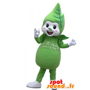 Maskotti vihreä ja valkoinen lehti ja jättiläinen hymyillen - MASFR031144 - maskotteja kasvit