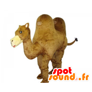 Camel mascot, giant, beautiful and realistic