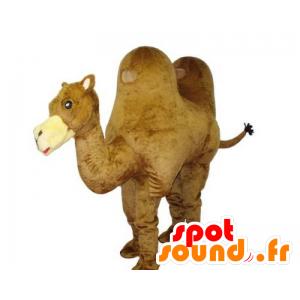 Mascota de camello, gigante, hermoso y realista