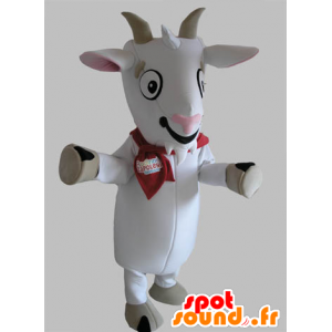 Goat mascot, white and gray biquette - MASFR031788 - Goats and goat mascots