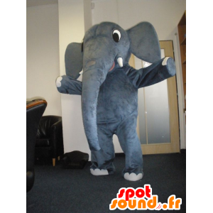 Mascotte elefante grigio, molto carino - MASFR032034 - Mascotte elefante