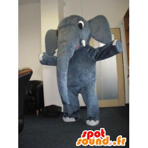 Maskottchen Elefant grau, sehr nett - MASFR032034 - Elefant-Maskottchen