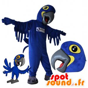 Blu mascotte e pappagallo giallo. Uccello mascotte