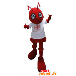 Red ant mascot with a white shirt - MASFR032263 - Mascots Ant