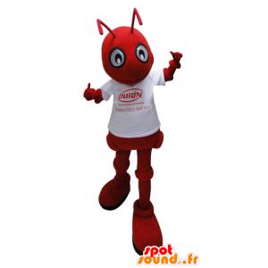 Rosso mascotte formica con una camicia bianca - MASFR032263 - Mascotte Ant