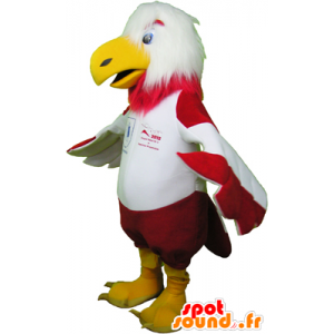 Mascot of red and white eagle in sportswear - MASFR032471 - Sports mascot