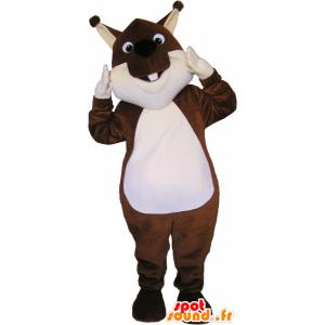Marrón y blanco de la mascota de ardilla - MASFR032730 - Ardilla de mascotas
