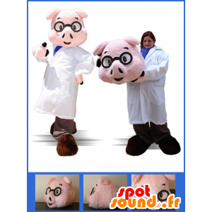 Dressed pig mascot nurse, physician - MASFR032886 - Mascots pig