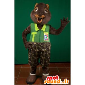 La mascota de la ardilla, la marmota, el castor marrón - MASFR032968 - Ardilla de mascotas